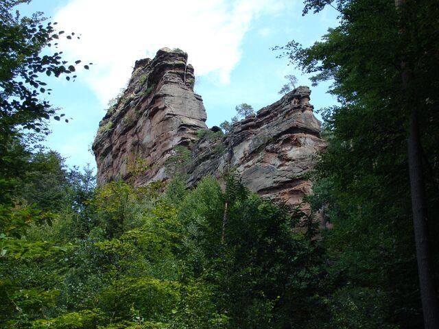 Top Wanderregion und Mountainbike-Region Pfälzerwald