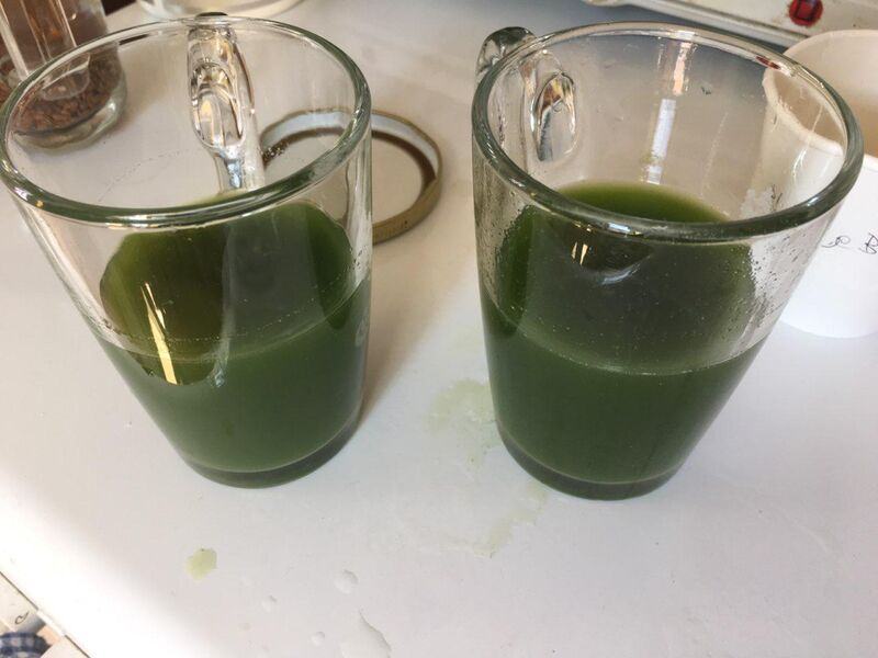 Seasonal Wildherb Juice ~ This is as best as it legally gets. Biophotons for you. Glow.
