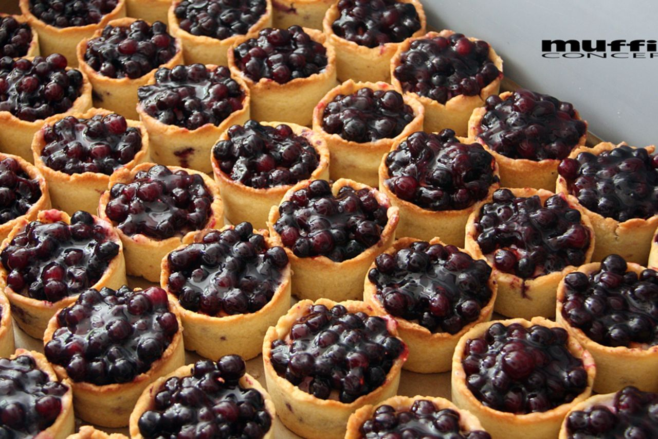 tvarohové koláčky s borůvkami