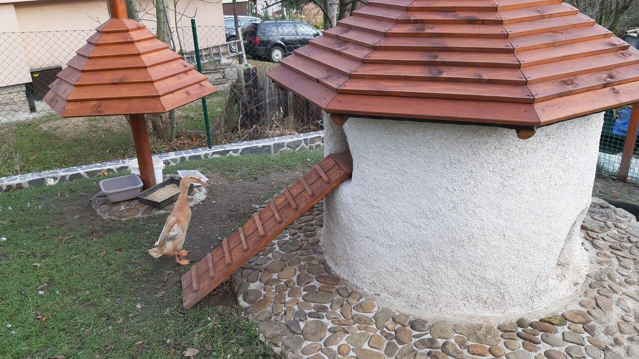 Venkovní welness centrum pro z kačeny a želvy z konopného betonu.