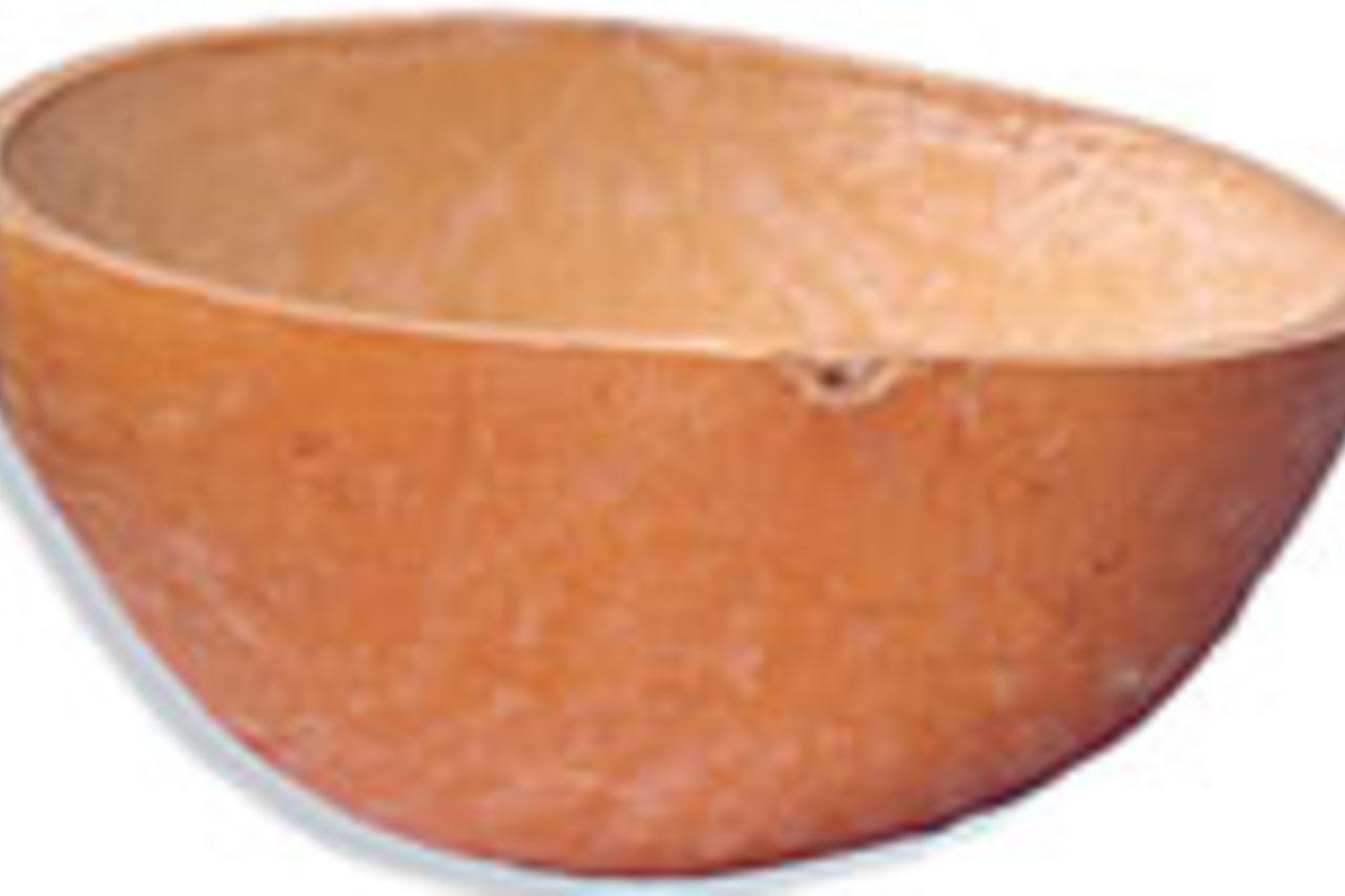 «LE KWI KREOL » ou (le coui créole)