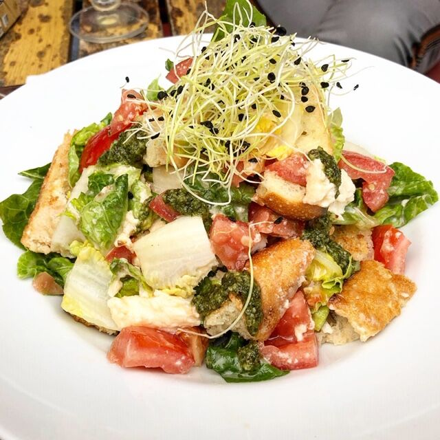 Tomaten-Brot-Salat mit Büffelmozzarella