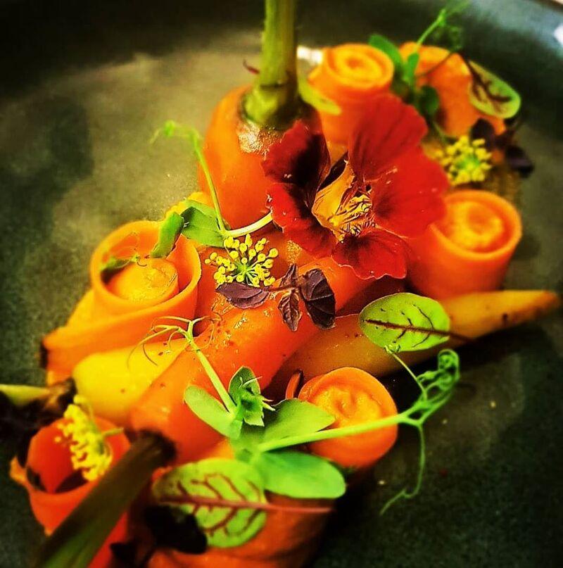 Petit potager de carottes au pastis
