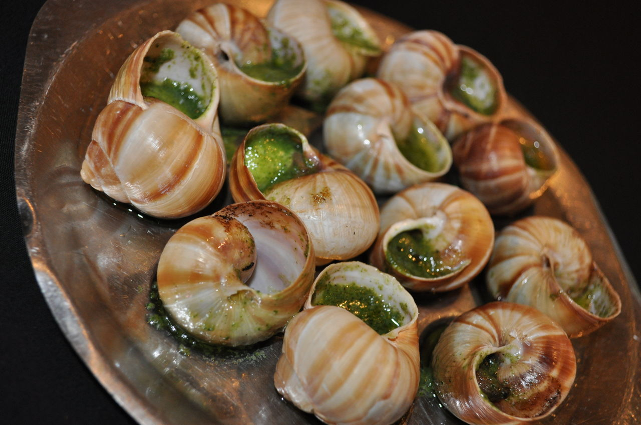 burgandy snails with garlic butter Escargots de bourgogne